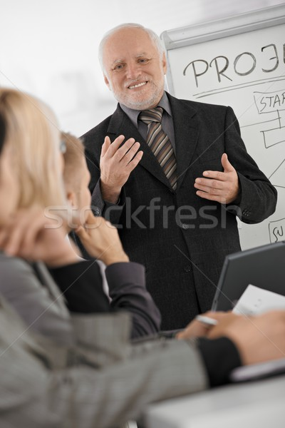 Senior uitvoerende uitleggen werk collega's ervaren Stockfoto © nyul