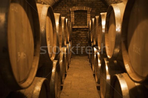 Winecellar Stock photo © nyul