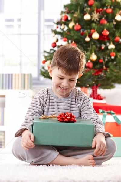 Feliz nino Navidad sesión piso árbol de navidad Foto stock © nyul