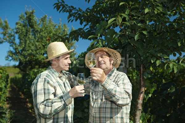 Stock photo: Winemakers testing wine