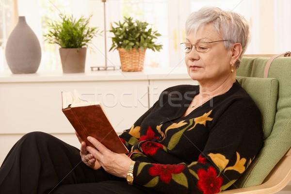 пенсионер чтение кресло портрет ярко гостиной Сток-фото © nyul