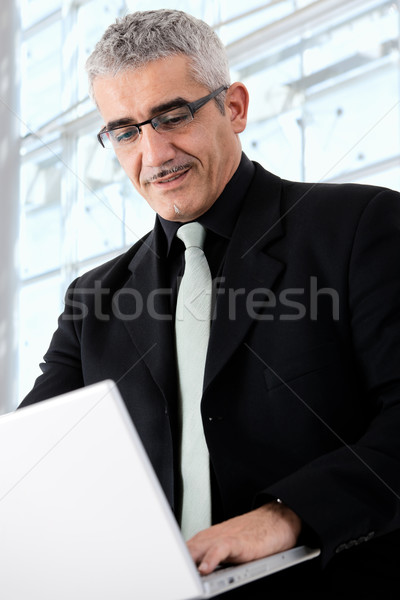Businessman working on laptop Stock photo © nyul