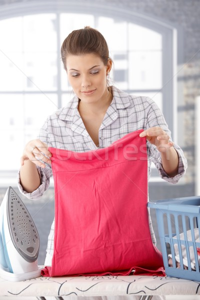 Smiling woman doing housework Stock photo © nyul