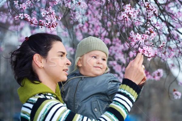 Zdjęcia stock: Wiosną · matka · rok · starych · dziecko · cieszyć · się