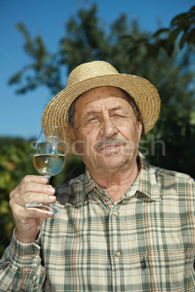 Senior vintner testing wine Stock photo © nyul