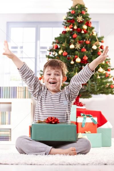 счастливым мало мальчика настоящее Рождества смеясь Сток-фото © nyul
