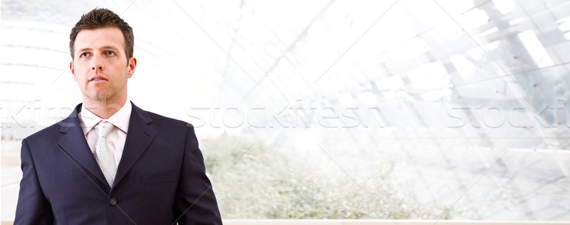 Business banner - mid-adult businessman Stock photo © nyul