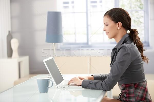 Сток-фото: молодые · женщины · используя · ноутбук · домой · улыбаясь · рабочих