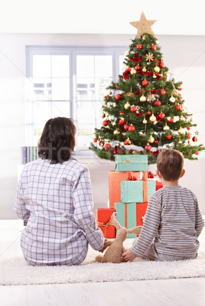 Mom and son looking at christmas tree Stock photo © nyul