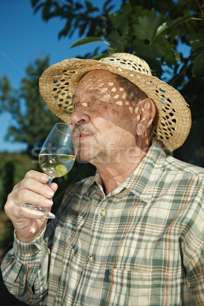Senior vintner tasting wine Stock photo © nyul