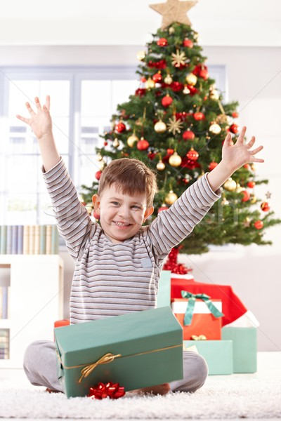 Happy kid raising arms at christmas Stock photo © nyul