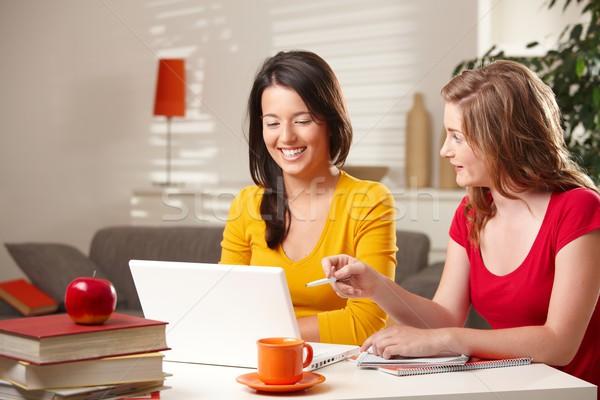 Boldog iskolás lányok tanul számítógép nevet néz Stock fotó © nyul