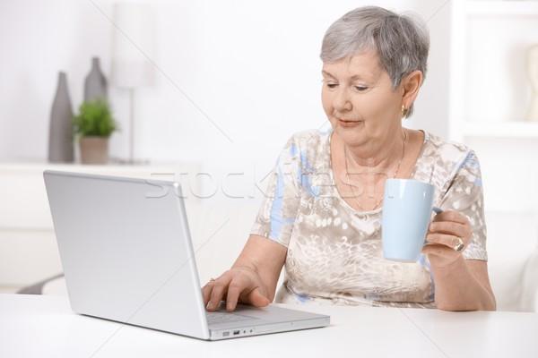 Senior woman using laptop computer Stock photo © nyul