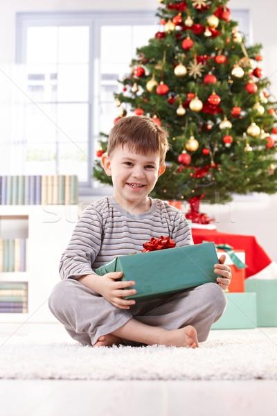 смеясь мальчика Рождества сидят полу настоящее Сток-фото © nyul