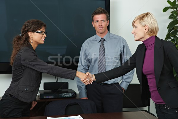 Business people shaking hands Stock photo © nyul