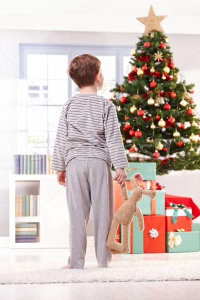 Pyjama boy with toy at christmas tree Stock photo © nyul