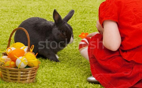Meisje Easter Bunny Pasen afbeelding spelen groene Stockfoto © nyul