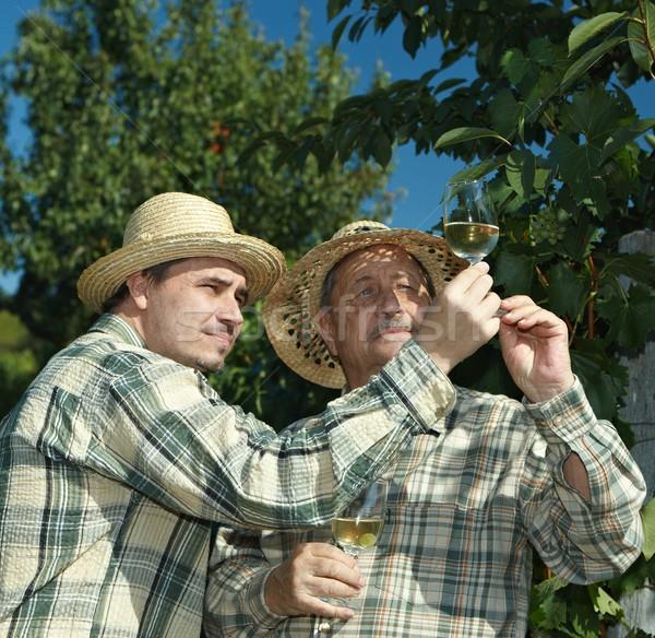 Foto stock: Teste · vinho · ao · ar · livre · comida · fruto · homens