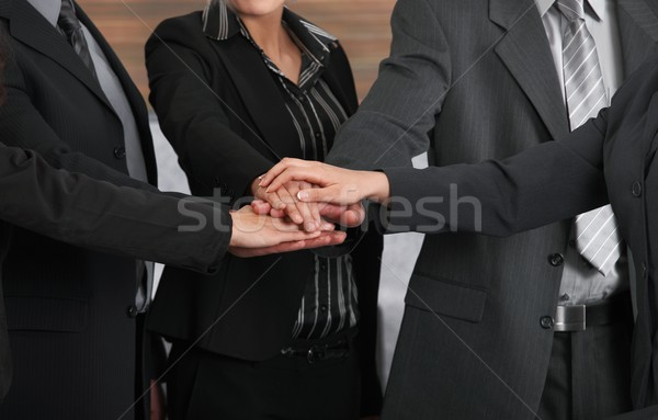 Joined hands Stock photo © nyul