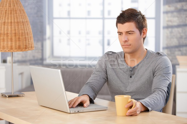 Young man concentrating on laptop screen Stock photo © nyul