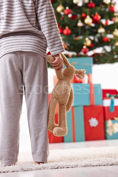 Pequeño nino Navidad pie juguete árbol de navidad Foto stock © nyul