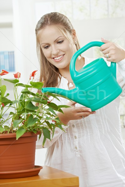 Young woman watering plant Stock photo © nyul