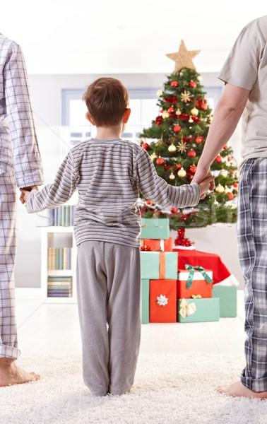 семьи Рождества Постоянный , держась за руки утра рук Сток-фото © nyul