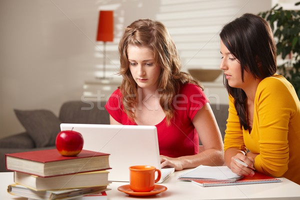 Stock photo: Schoolgirls studying at table.