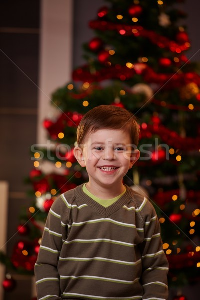 Heureux peu garçon Noël portrait arbre de noël Photo stock © nyul