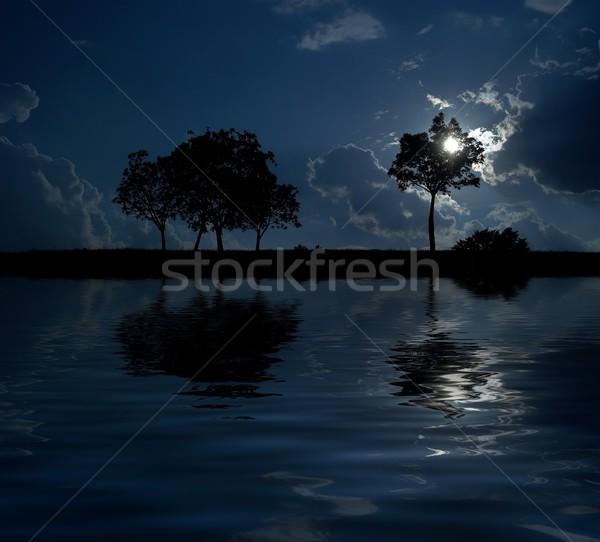 Dreamland by night Stock photo © nyul
