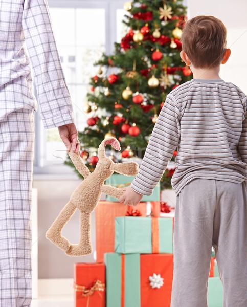 матери сын Рождества оба игрушку Сток-фото © nyul