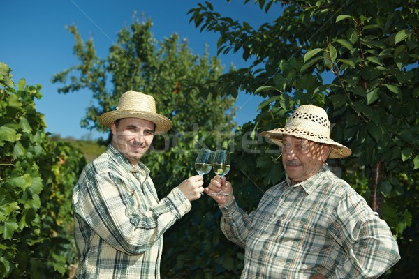 Winemakers celebrating vintage Stock photo © nyul