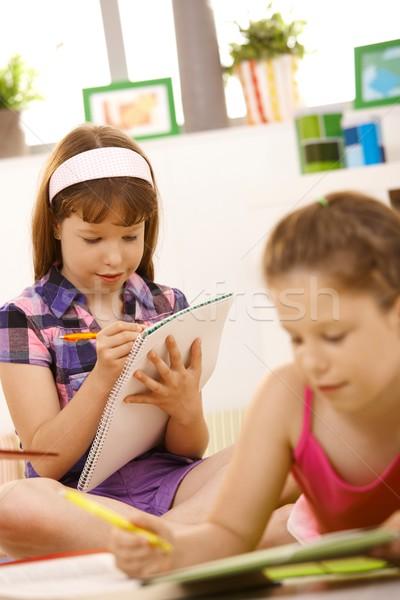 Ninas escrito deberes colegialas junto ejercicio Foto stock © nyul
