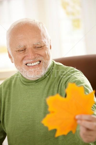 Сток-фото: улыбаясь · старик · глядя · желтый · лист
