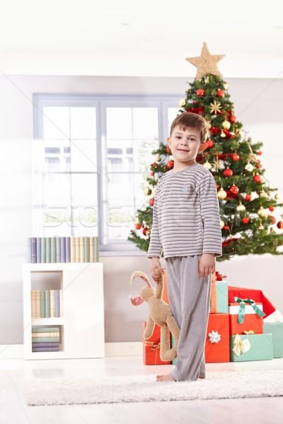 Smiling little kid on christmas morning Stock photo © nyul