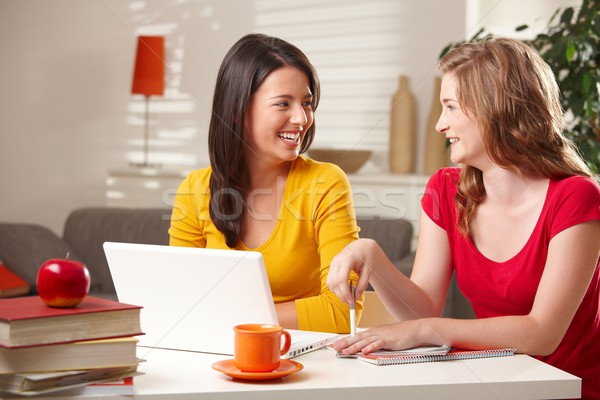 Schoolmeisjes lachend tabel gelukkig ander vergadering Stockfoto © nyul