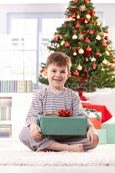 портрет счастливым мало Kid Рождества сидят Сток-фото © nyul