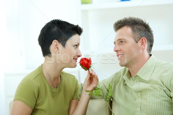 Sevmek çift gül romantik adam kırmızı gül Stok fotoğraf © nyul