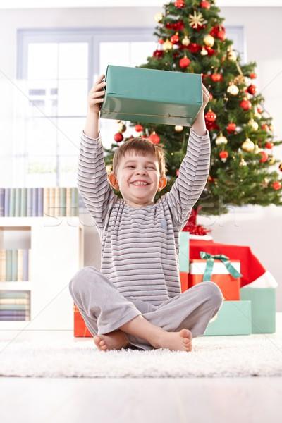 Pequeño nino riendo Navidad sesión piso Foto stock © nyul