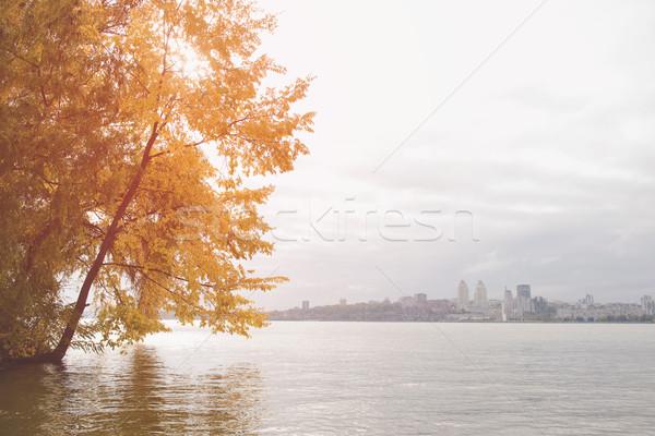 Beautiful autumn landscape. Stock photo © O_Lypa
