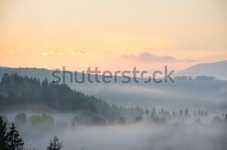 Reggel hegyek hajnal természet háttér hegy Stock fotó © O_Lypa