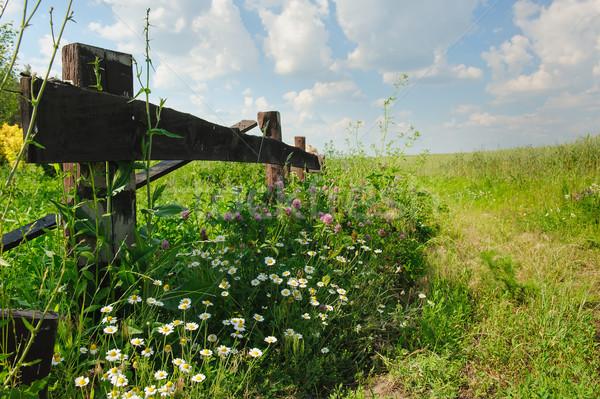 Oude hek landelijk weg land hout Stockfoto © O_Lypa