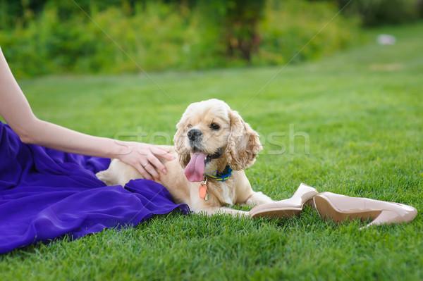 Menina cão mulher longo Foto stock © O_Lypa