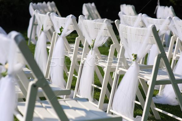Fehér díszített székek zöld gyep szék Stock fotó © O_Lypa