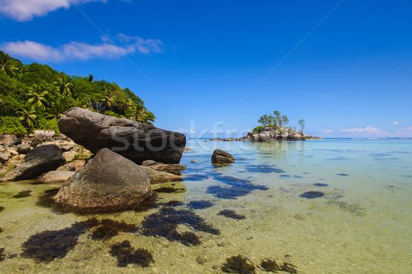 Enorme pietre spiaggia Seychelles paesaggio marino view Foto d'archivio © O_Lypa