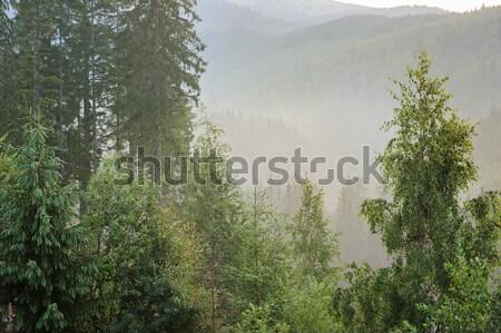 утра гор рассвета природы фон горные Сток-фото © O_Lypa
