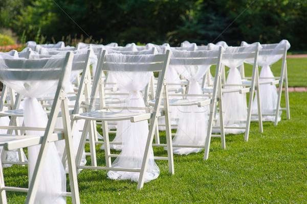 Beyaz dekore edilmiş sandalye yeşil çim ayarlamak Stok fotoğraf © O_Lypa