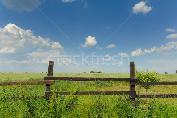 Country Timber Fence Stock photo © O_Lypa