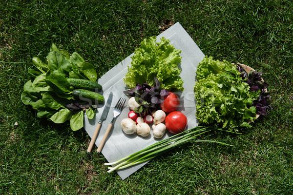 Sağlıklı gıda taze sebze çim yeşil çim arka plan Stok fotoğraf © O_Lypa