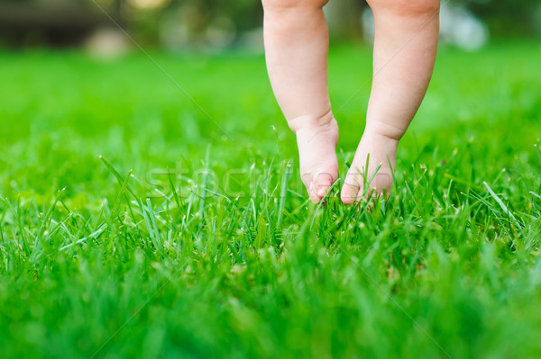 Bebê sentimento grama primeiro tempo pé Foto stock © O_Lypa